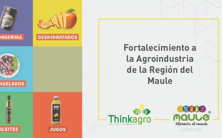 Fortalecimiento a la Agroindustria de la Región del Maule